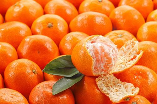 Cách chọn hoa quả như cam, quýt, xoài là chọn quả cầm chắc tay, da bóng sáng