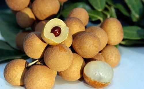 Nhãn lồng Hưng Yên có cùi dày, hạt nhỏ, mùi thơm nhẹ dịu là nhận biết để phân biệt nhãn Trung Quốc